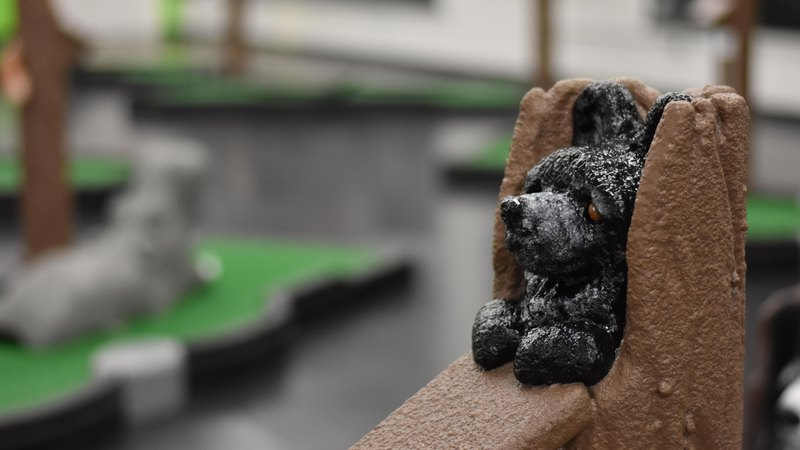 Dog | Horsham Indoor mini golf